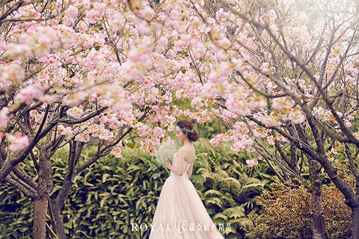 拍婚紗月份-拍婚紗季節-春天婚紗-櫻花-淡水-大屯莊園-婚紗照-台北-拍婚紗-蘿亞婚紗