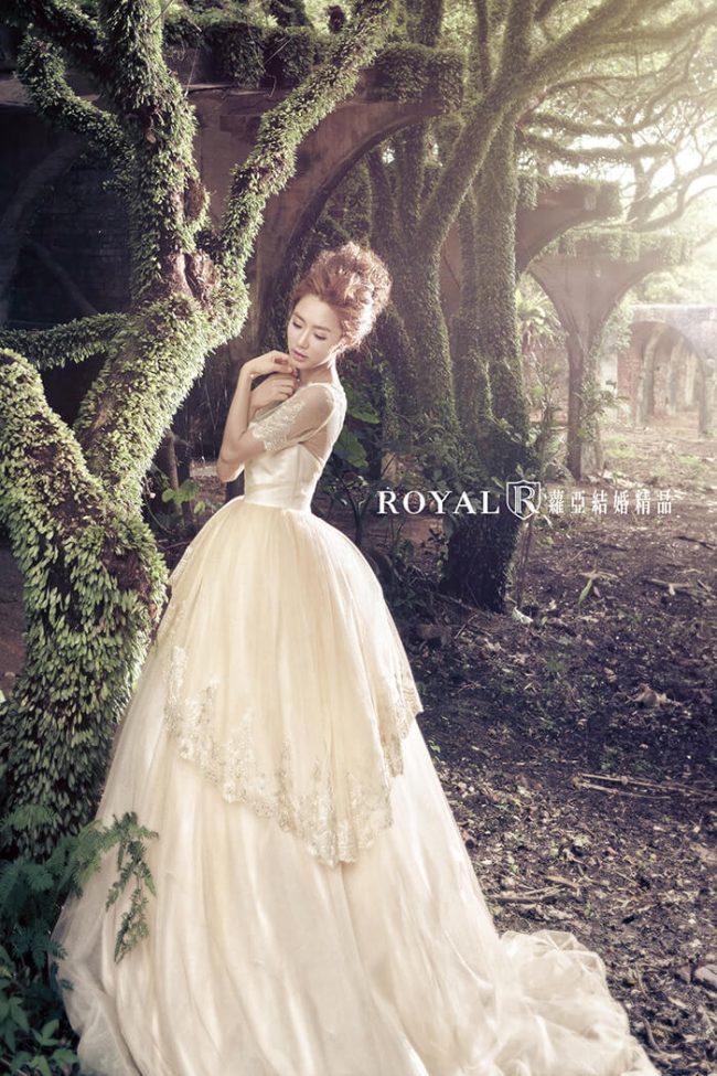 婚紗款式2020-婚紗禮服款式-蓬裙婚紗-香檳金禮服-短袖婚紗