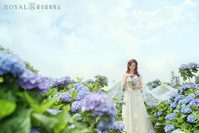 拍婚紗月份-拍婚紗季節-夏天拍婚紗-陽明山-繡球花-3-台北-拍婚紗-蘿亞婚紗