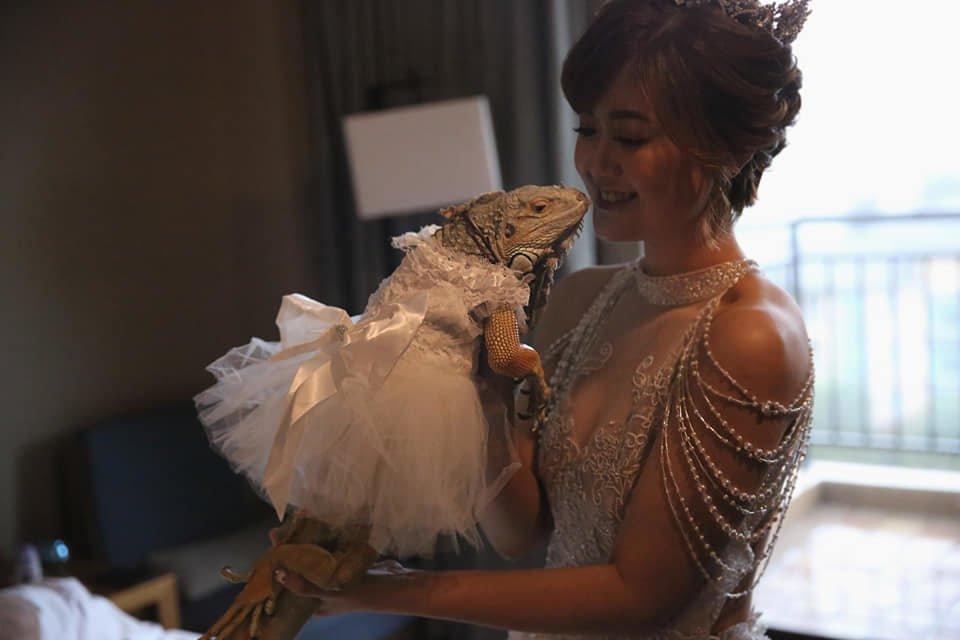 蘿亞婚紗評價-蘿亞婚紗-台北婚紗推薦-新娘秘書 -婚禮攝影 (36)